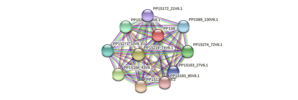 PP1S8_56V6.1 protein (Physcomitrella patens) - STRING interaction network