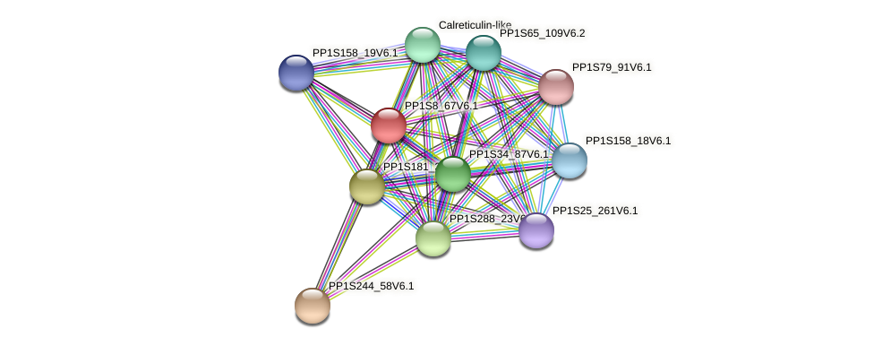 PP1S8_67V6.1 protein (Physcomitrella patens) - STRING interaction network