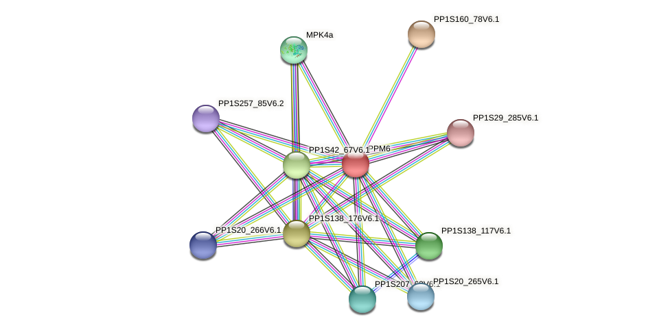 PPM6 protein (Physcomitrella patens) - STRING interaction network