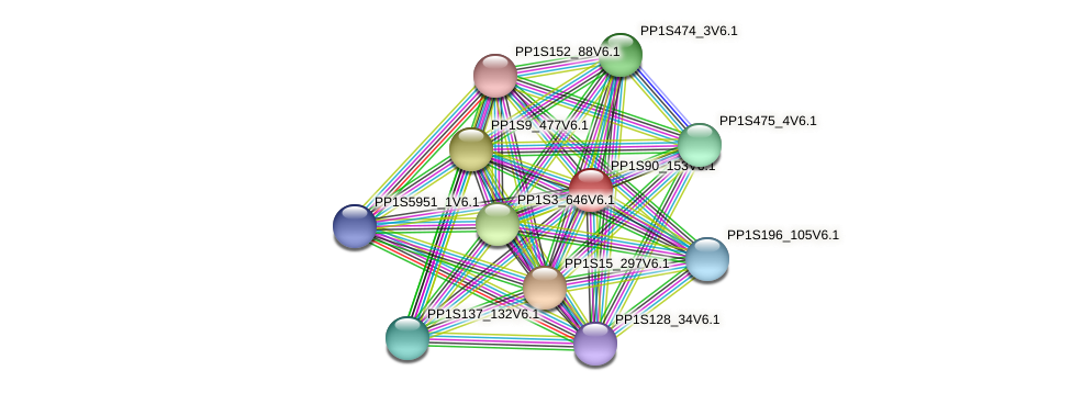 PP1S90_153V6.1 protein (Physcomitrella patens) - STRING interaction network