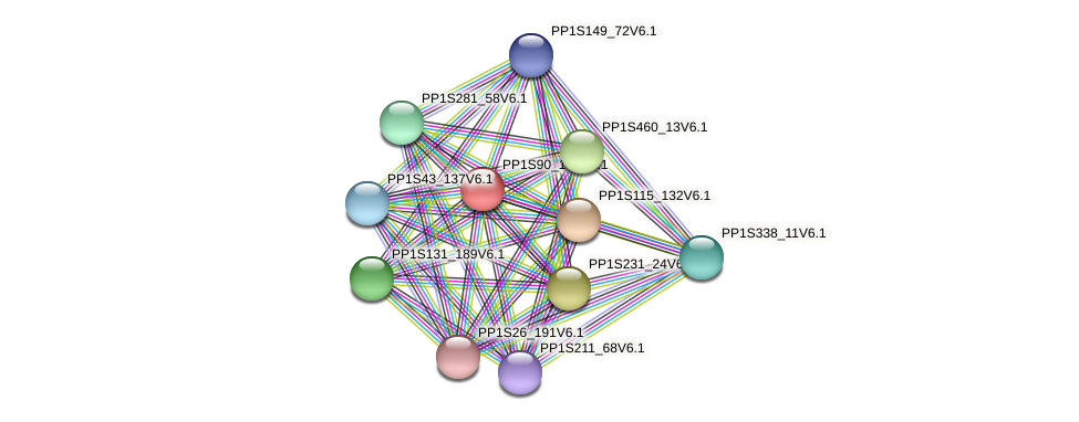 PP1S90_160V6.1 protein (Physcomitrella patens) - STRING interaction network