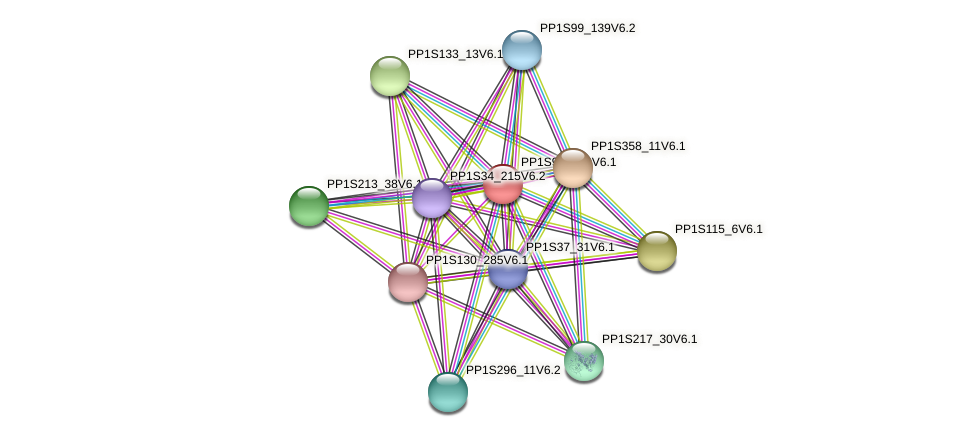 PP1S90_180V6.1 protein (Physcomitrella patens) - STRING interaction network