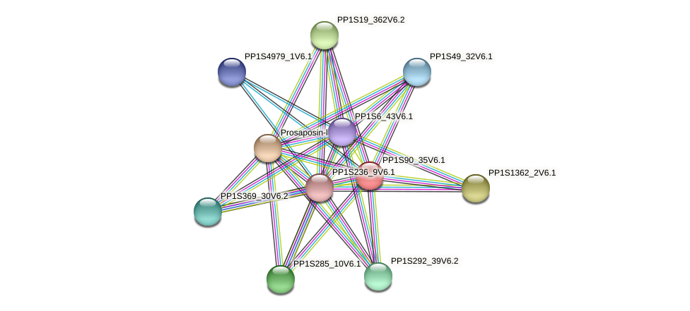 PP1S90_35V6.1 protein (Physcomitrella patens) - STRING interaction network
