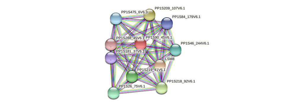 PP1S90_45V6.1 protein (Physcomitrella patens) - STRING interaction network