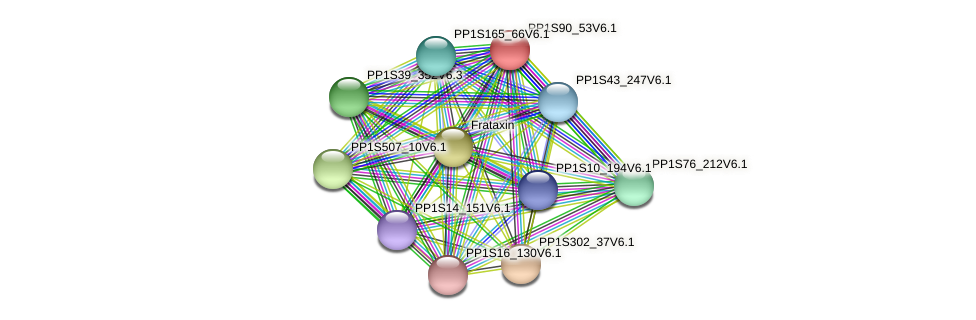 PP1S90_53V6.1 protein (Physcomitrella patens) - STRING interaction network