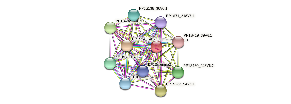 PP1S90_78V6.1 protein (Physcomitrella patens) - STRING interaction network