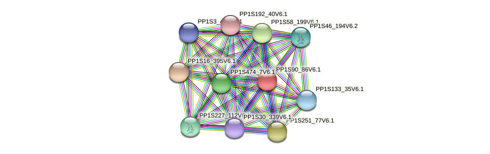 PP1S90_86V6.1 protein (Physcomitrella patens) - STRING interaction network