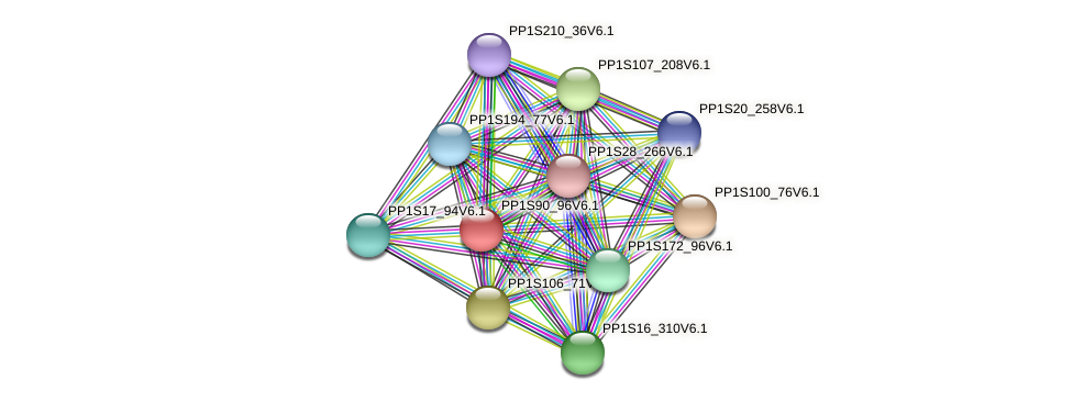 PP1S90_96V6.1 protein (Physcomitrella patens) - STRING interaction network