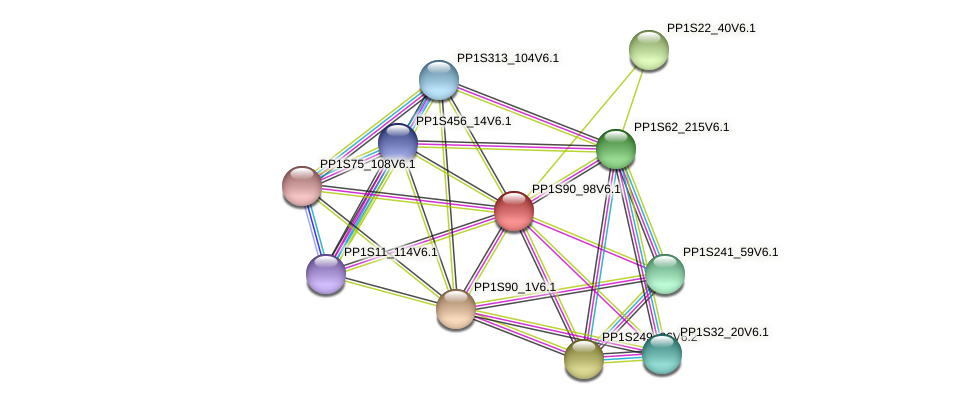 PP1S90_98V6.1 protein (Physcomitrella patens) - STRING interaction network