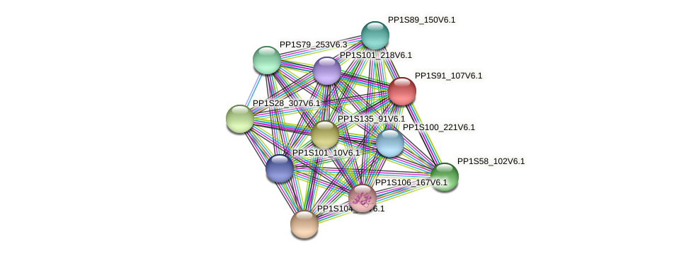 PP1S91_107V6.1 protein (Physcomitrella patens) - STRING interaction network