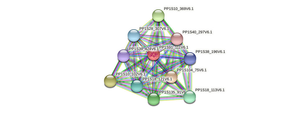 PP1S91_111V6.1 protein (Physcomitrella patens) - STRING interaction network
