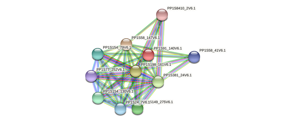 PP1S91_140V6.1 protein (Physcomitrella patens) - STRING interaction network