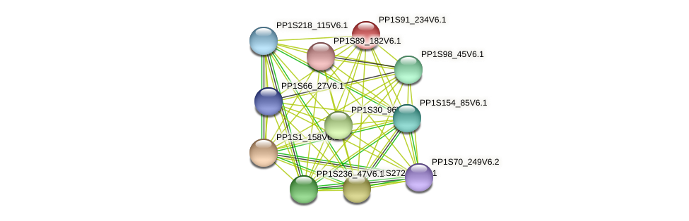 PP1S91_234V6.1 protein (Physcomitrella patens) - STRING interaction network