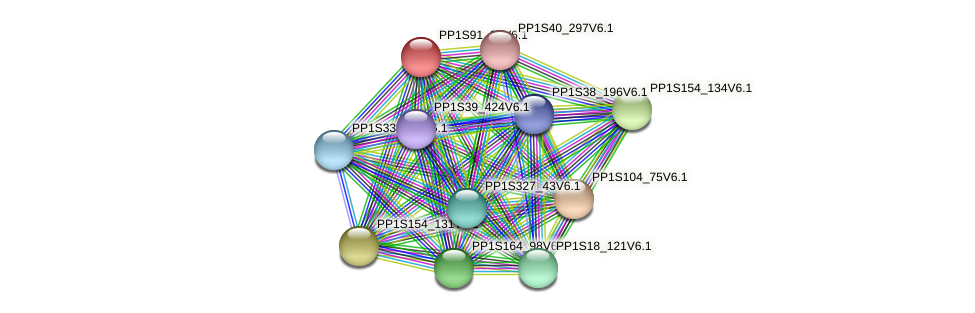 PP1S91_27V6.1 protein (Physcomitrella patens) - STRING interaction network
