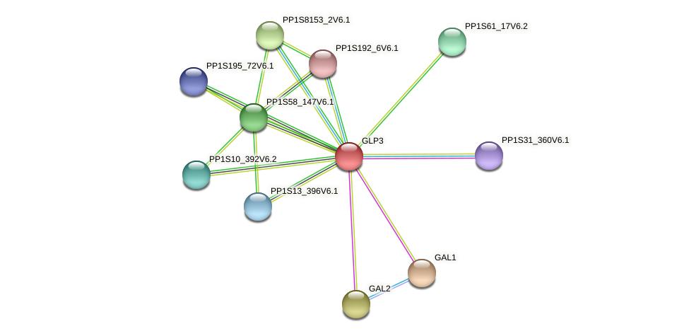 PP1S91_36V6.1 protein (Physcomitrella patens) - STRING interaction network