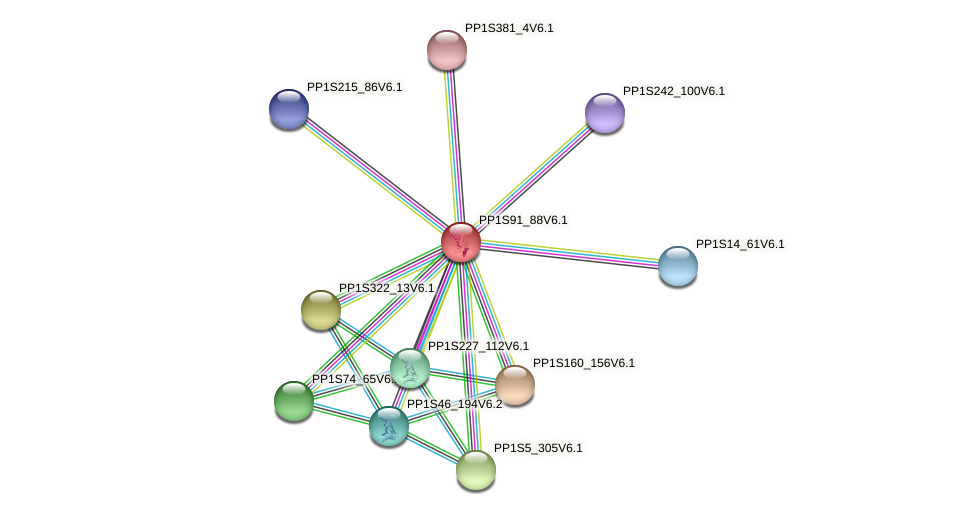 PP1S91_88V6.1 protein (Physcomitrella patens) - STRING interaction network