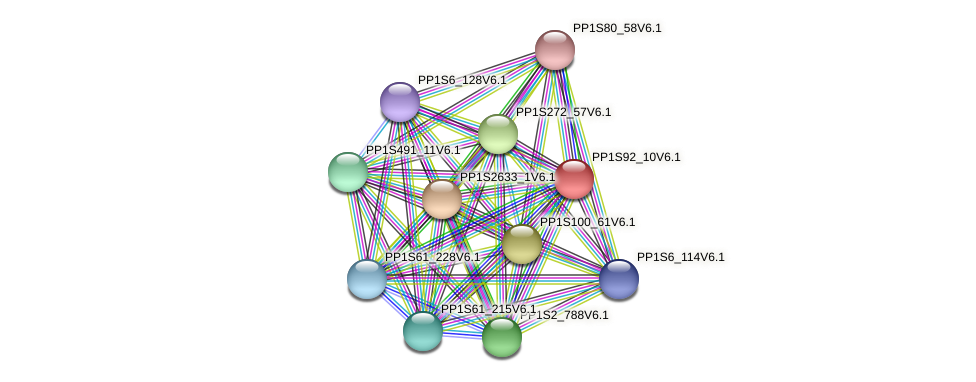 PP1S92_10V6.1 protein (Physcomitrella patens) - STRING interaction network