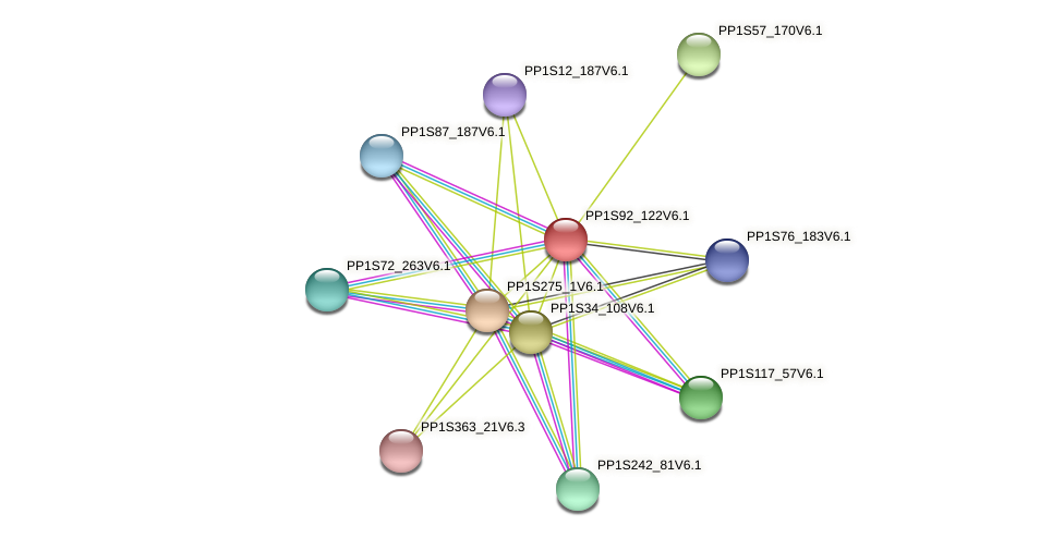 PP1S92_122V6.1 protein (Physcomitrella patens) - STRING interaction network