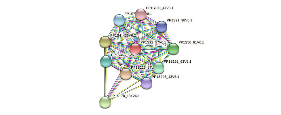 PP1S92_57V6.1 protein (Physcomitrella patens) - STRING interaction network