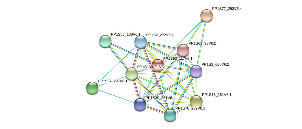 PP1S93_117V6.1 protein (Physcomitrella patens) - STRING interaction network