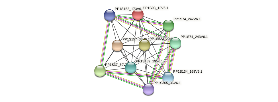 PP1S93_12V6.1 protein (Physcomitrella patens) - STRING interaction network