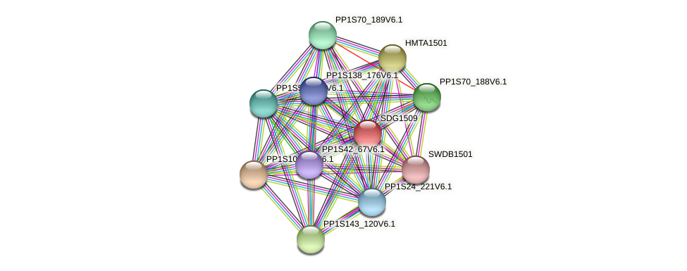 SDG1509 protein (Physcomitrella patens) - STRING interaction network