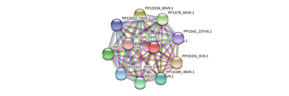 PP1S93_182V6.1 protein (Physcomitrella patens) - STRING interaction network