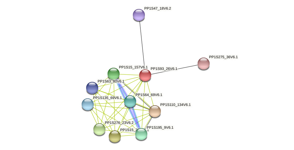 PP1S93_26V6.1 protein (Physcomitrella patens) - STRING interaction network