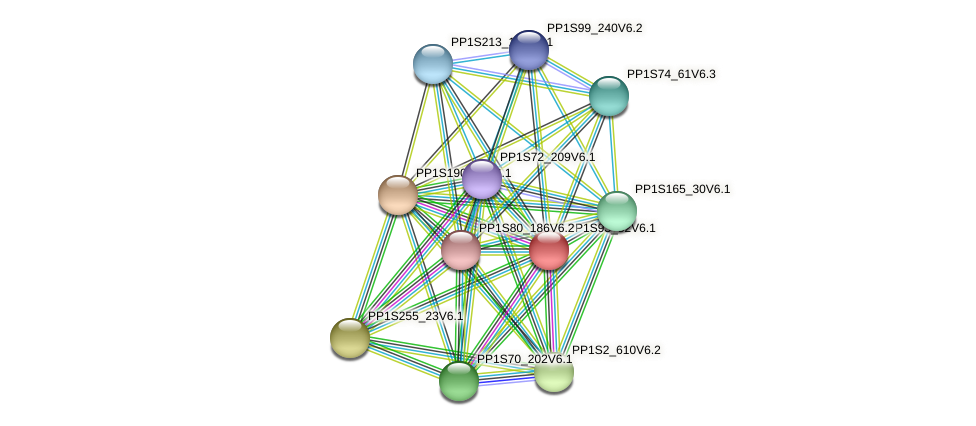 PP1S93_52V6.1 protein (Physcomitrella patens) - STRING interaction network