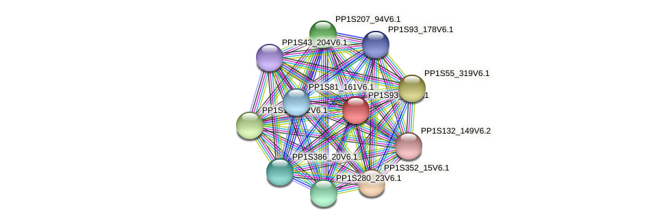 PP1S93_65V6.1 protein (Physcomitrella patens) - STRING interaction network
