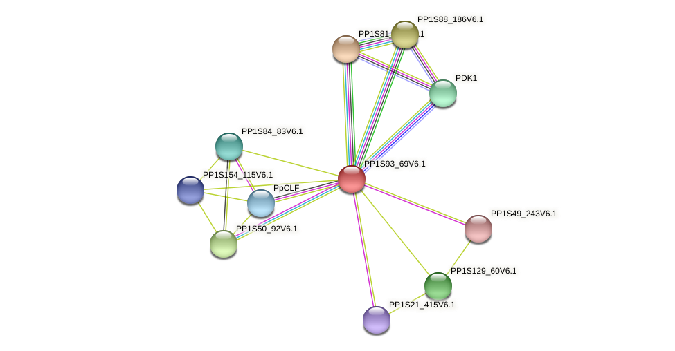 PP1S93_69V6.1 protein (Physcomitrella patens) - STRING interaction network