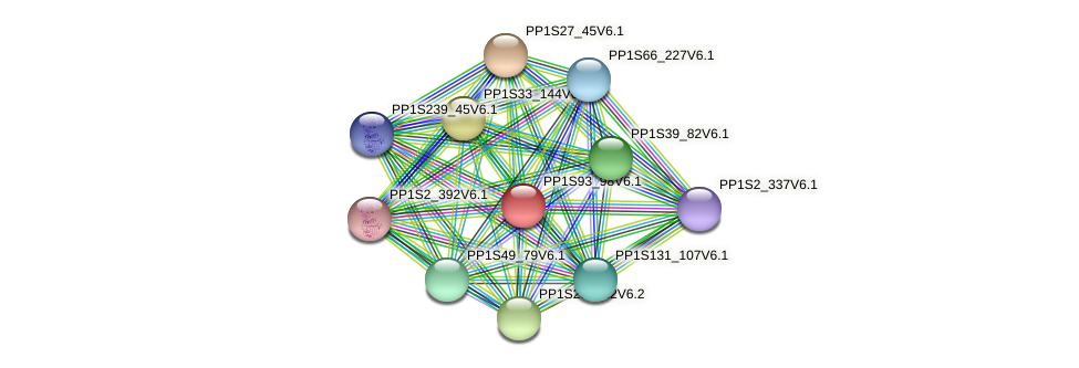 PP1S93_98V6.1 protein (Physcomitrella patens) - STRING interaction network