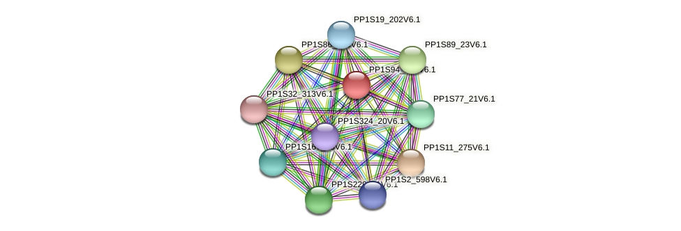 PP1S94_105V6.1 protein (Physcomitrella patens) - STRING interaction network