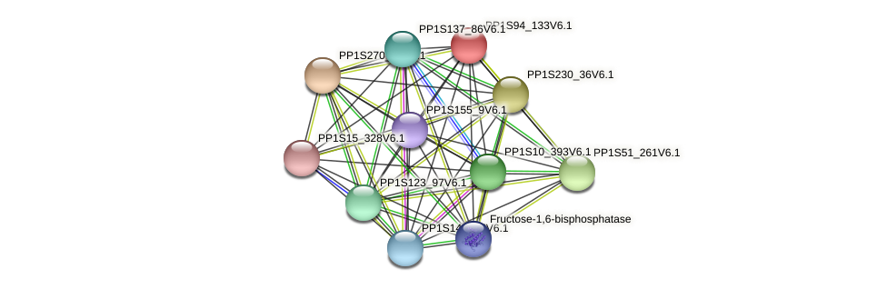PP1S94_133V6.1 protein (Physcomitrella patens) - STRING interaction network