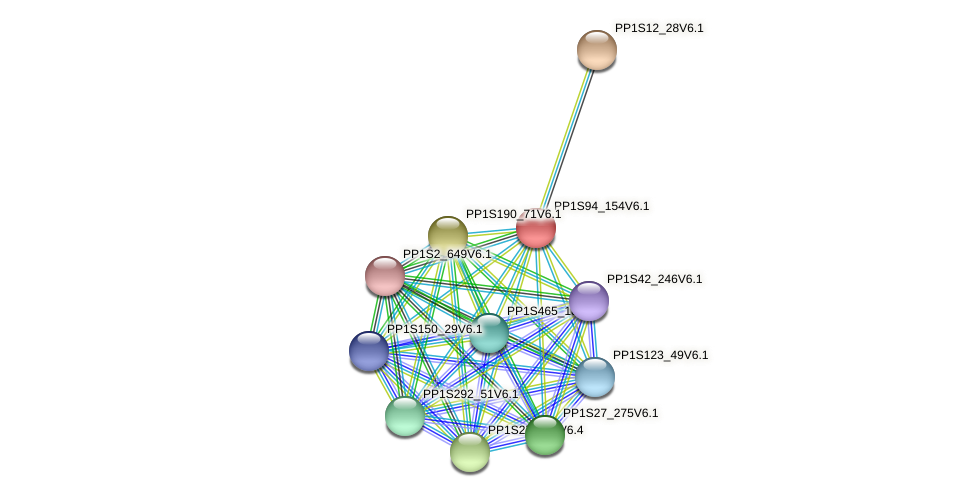 PP1S94_154V6.1 protein (Physcomitrella patens) - STRING interaction network