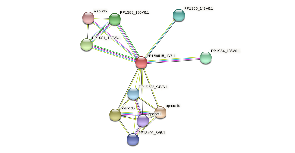 PP1S9515_1V6.1 protein (Physcomitrella patens) - STRING interaction network