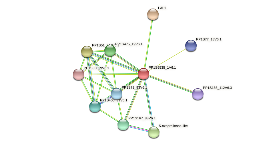 PP1S9535_1V6.1 protein (Physcomitrella patens) - STRING interaction network