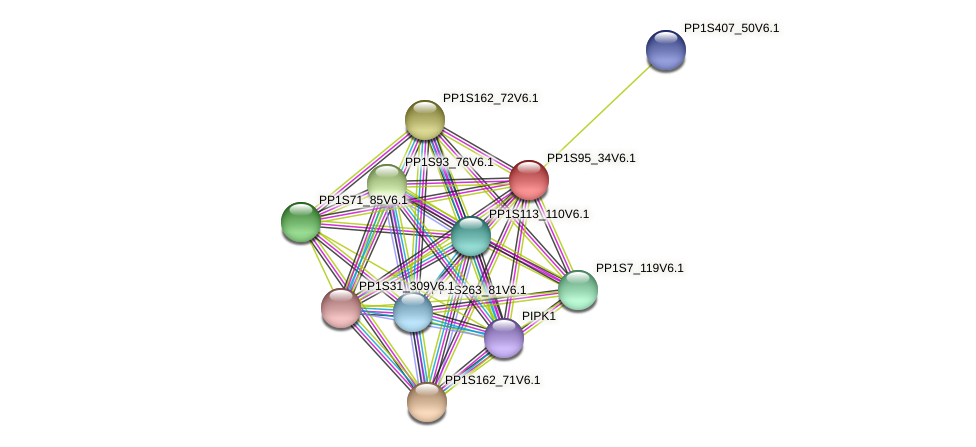 PP1S95_34V6.1 protein (Physcomitrella patens) - STRING interaction network