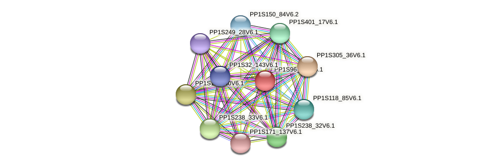 PP1S96_101V6.1 protein (Physcomitrella patens) - STRING interaction network