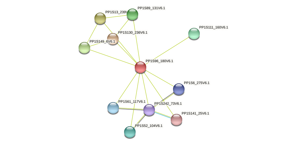 PP1S96_180V6.1 protein (Physcomitrella patens) - STRING interaction network