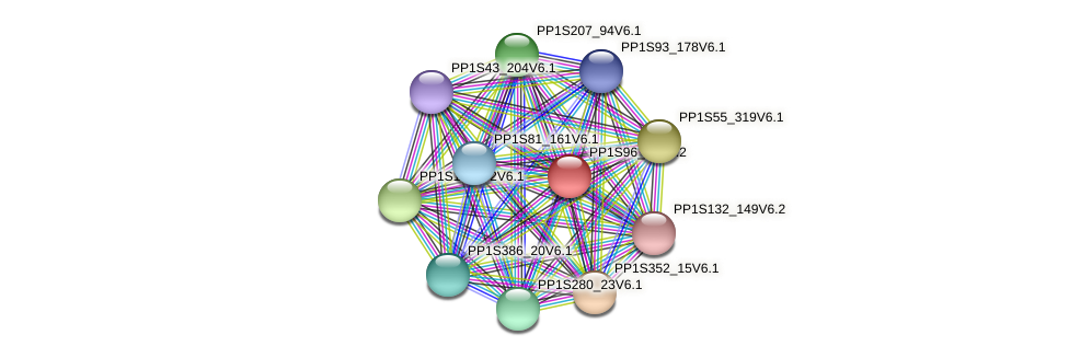 PP1S96_37V6.1 protein (Physcomitrella patens) - STRING interaction network