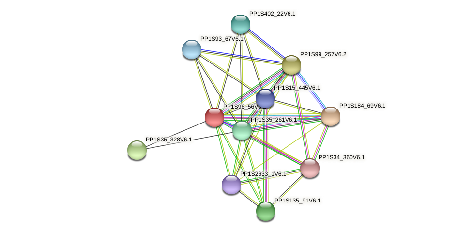 PP1S96_56V6.2 protein (Physcomitrella patens) - STRING interaction network