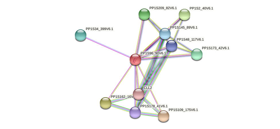 PP1S96_90V6.1 protein (Physcomitrella patens) - STRING interaction network
