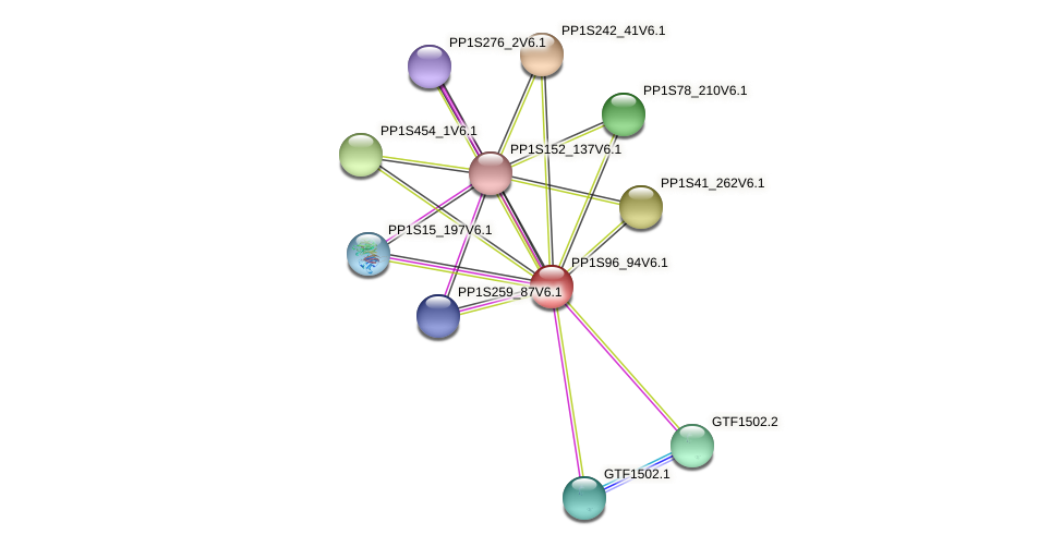 PP1S96_94V6.1 protein (Physcomitrella patens) - STRING interaction network