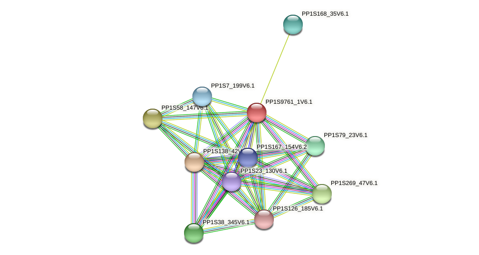 PP1S9761_1V6.1 protein (Physcomitrella patens) - STRING interaction network