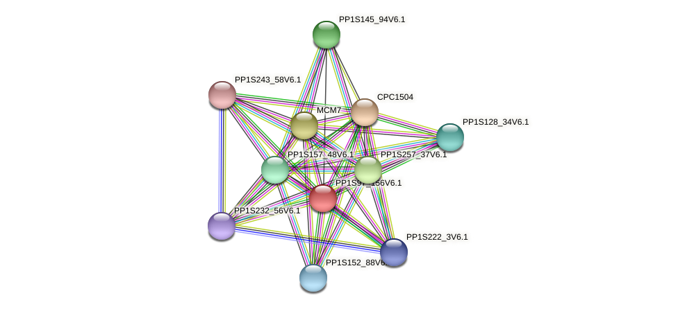 PP1S97_156V6.1 protein (Physcomitrella patens) - STRING interaction network