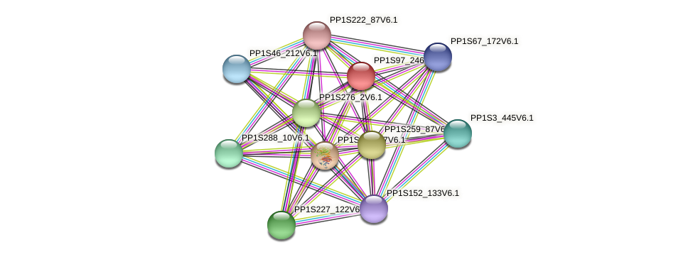 PP1S97_246V6.1 protein (Physcomitrella patens) - STRING interaction network