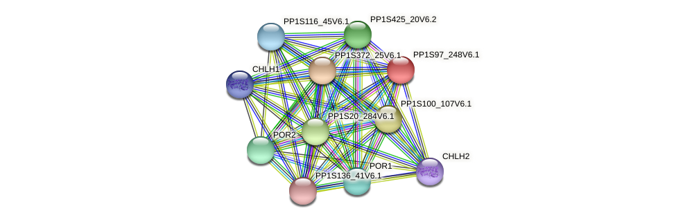 PP1S97_248V6.1 protein (Physcomitrella patens) - STRING interaction network