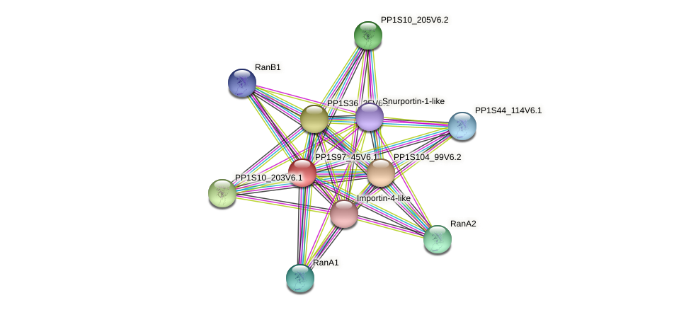 PP1S97_45V6.1 protein (Physcomitrella patens) - STRING interaction network