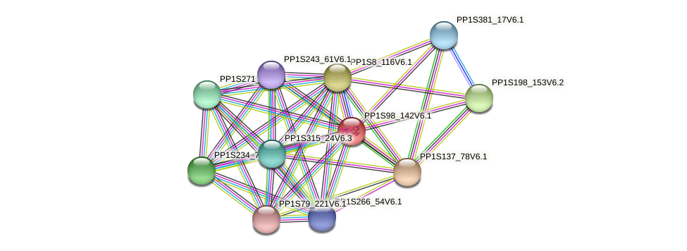 PP1S98_142V6.1 protein (Physcomitrella patens) - STRING interaction network